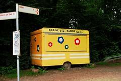 Bollo, Eis & Sahne (FrauN.ausD.) Tags: gelb eis sahne yellow icecream whippedcream haltern olfen wanderweg hikingpath nikon deutschland germany nrw