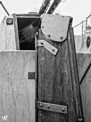 le gouvernail DxOFP Ilforddeta100 LM+35 1004196 (mich53 - thank you for your comments and 4M view) Tags: abandonné abandonado abandoned toile leicamtype240 télémètre telémetro rangefinder bateaux boats summiluxm35mmf14asph graphicalexploration 4winter winter spinnennetz spiderweb toiledaraigné noirblanc blackwhite