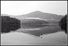 Duck on Lake Petit (mono) (jhpen2) Tags: duck bird waterfowl lake mountain reflection monochrome bw blackandwhite bnw water nature landscape xti canon 400d