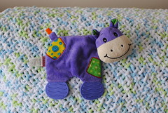 Holly (Ulixis) Tags: ulixis blog toys soft plush noisy crackle hippopotamus purple fun patch face chew