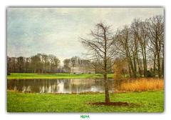 KASTEEL van ELVERDINGE (régisa) Tags: kasteel château castle elverdinge vlaanderen belgique belgie arbre tree baum boom étang westvlaanderen flandre