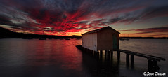 0S1A2001 (Steve Daggar) Tags: saratoga sunset gosford nswcentralcoast waterscape landscape wharf boasthed