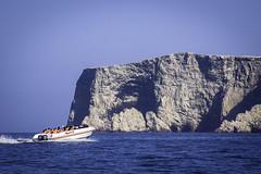 Islas Ballestas (David Baggins) Tags: islasballestas ballestas paracas island sea mar pacifico océanopacífico pacificocean rocky perú peru