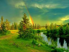 Double rainbow after a severe thunderstorm (+1) (peggyhr) Tags: peggyhr doublerainbow lake trees dsc03150ab bluebirdestates alberta canada carolinasfarmfriends thegalaxy thegalaxystars thelooklevel1red frameit~level01~ thegalaxyhalloffame thelooklevel2yellow