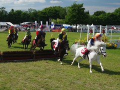 The Shetland Pony Grand National at The Kent County Show....archiving. (favmark1) Tags: kentcountyshow detling 2017 saturday
