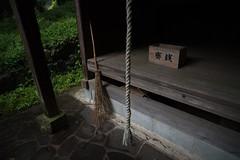 Collaboration of four. (Yasuyuki Oomagari) Tags: shrine country rainy scean simple nikon d810 zeiss distagont2821 japan