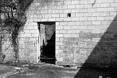 Down in Mississippi (36) (momentspause) Tags: canonef50mmf18 niftyfifty canon5dmkiii blackandwhite bw wall shadow mississippi