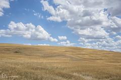 Tuscany (M. Ángeles Cuenca) Tags: pienza tuscany italy italia toscana sky blue yellow azul amarillo clouds