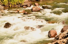 (careth@2012) Tags: nature outdoors creek scenery scene scenic view flowing flow flows water rocks rock britishcolumbia