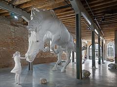 Le pavillon de l'Argentine (Biennale de Venise 2017)