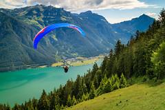 Paragliding in Pertisau/Achensee (USpecks_Photography) Tags: paragliding parasailing pertisau achensee austria freizeit leisure activity gliding flying thermik uplift auftrieb lake see alps alpen mountains gebirge