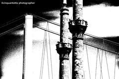 3 (Ecinquantotto ( + 1.500.000 views !!! GRAZIE) Tags: architettura architecture art arte acqua abstract bn bw blackwhite d3000 dreams ponte istanbul nikon nikond3000 ombre turchia turkey turkish