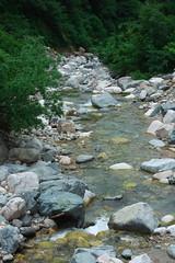 East Branch DSC_3681 (touhenboku) Tags: iwana char fly fishing flyfishing stream branch water rock