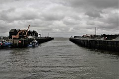 Welcome home, you total stranger (Andrew 62) Tags: whitstable harbour sea coast sky cloud boats cranes