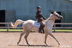 JBC_8593.jpg (Jim Babbage) Tags: krahc annualshow appaloosa horses bethany 119