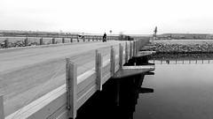 Bridge over the Estuary (EmperorNorton47) Tags: bolsachicaecologicalreserve huntingtonbeach california photo digital spring bridge estuary creek