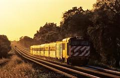 CP class 1800 to Faro (rolfstumpf) Tags: portugal englishelectric trains railway railroad caminhosdeferroportugueses transport glint evening sunset budd tracks broadgauge travel