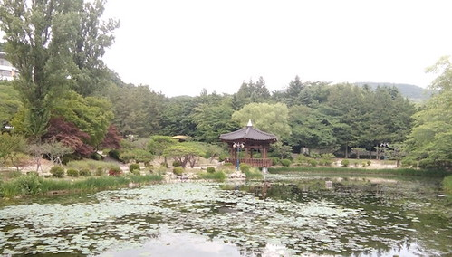Gyeongju, Boman Lake, Pond