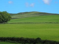 Last Day of Spring (Céanndhubahn) Tags: drystanedyke fieldstone fields greengrass trees scotland carrickhills bluesky
