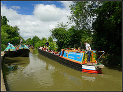 NUTFIELD (Jason 87030) Tags: bluelinecanalcarriers midlands guc grandunioncanal boat steel narowboat towpath cut water working work float livery historic history rally event braunston northants northamptonshire june 2017 nutfield blue lister petter northwich sun weather sony