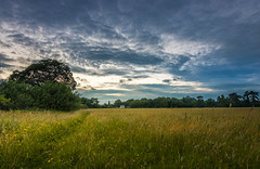 A Late Evening Walk (Rob Pitt) Tags: a late evening summer walk childer thornton meadow rivacrevalley little sutton cheshire ellesmereport uk england sunset
