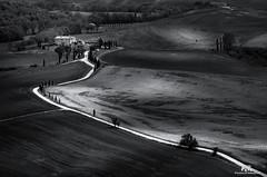 Val d'Orcia - Toscana / Tuscany (Abulafia82) Tags: pentax pentaxk5 k5 2017 abulafia italia italy toscana tuscany valdorcia orcia valley valle siena pienza sanquiricodorcia campagna countryside paesaggio paesaggi landscapes landscape