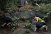 "Survival Games (""Daniel"") Tags: survival games childrens party birthday boys sigma sd15 foveon rain outdoor boyhood"
