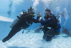18 28a (KnyazevDA) Tags: diver disability disabled diving undersea padi paraplegia paraplegic amputee egypt handicapped wheelchair aowd sea travel scuba underwater redsea