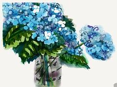 Hydrangeas (verplanck) Tags: ewe art summer flowers