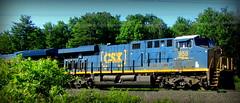 (timetomakethepasta) Tags: csx freight train engine locomotive selkirk new york photography outdoors
