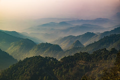 misty in the morning (Flutechill) Tags: mountain nature hill landscape fog sunset outdoors mountainpeak scenics forest sky sunrisedawn morning asia mist mountainrange dawn valley travel tree thailand chiangmai doiangkhang