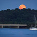 Strawberry Moon on the Potomac