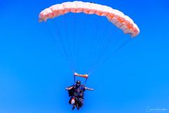 DSC_3903.jpg (Cameron Knowlton) Tags: sky diving air show oak bay 2017 nikon skydiving tea party parachuter captiaparachutevictoriabcteapartycapitalcityskydivingcanadad610air showcapital city skydivingcaptia oakbayteaparty oakbay teaparty bc canada d610 parachute victoria captiaparachutevictoriabcteapartycapitalcityskydiving
