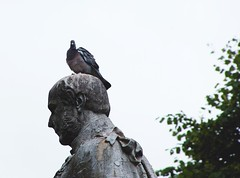 Berating Bird (harrysmall07) Tags: ifttt 500px park leaves sky city bird nature travel minimal statue uk england fun head funny laugh stone sculpture pigeon feathers outdoors feather minimalistic britain shoulders chester comedy mock grosvenor mockory