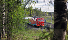 Back to spring (Alexander Fomichev) Tags: train passengertrain ep1 ep1122 yemtsa electriclocomotive helios trees birch northernrailway north rzd