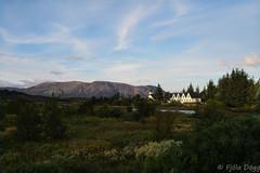 Þingvellir (Fjola Dogg) Tags: 2015 canon canonpowershotg7x evropa fjoladogg fjóladögg iceland islandia landscape thingvellir europe nature náttúra summer ísland þingvellir þingvellirnationalpark