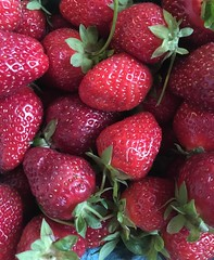 Fresh Strawberries (nrg_crisis (off and on)) Tags: strawberries farm fresh red summertime