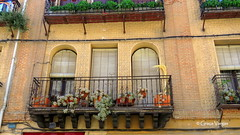 Segovia (Graça Vargas) Tags: graçavargas ©2017graçavargasallrightsreserved segovia espanha explore plant suculentas door balcony jun242017 363 362 478951160717
