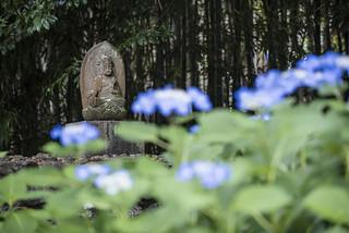 Kaju-ji 勧修寺