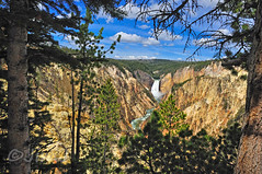 See You Soon (Jim Johnston (OKC)) Tags: artistpoint yellowstonepark lowerfalls canyon river wyoming