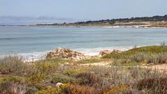 IMG_0019_21 Spanish Bay HDR (vicjuan) Tags: 20170625 美國 usa 加州 california montereycounty hdr tonemapping pebblebeach geotagged geo:lat=36608173 geo:lon=121952192 海 sea 太平洋 pacificocean spanishbay