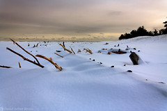 Whitefish Point, Michigan (Daniel Arthur Brown) Tags: december greatlakes lakesuperior mi michigan up upperpeninsula whitefishpoint beach coast cold landscape nature shore snow travel winter