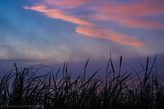 Grass, Lake, Fog, and Sky (BryanNewland) Tags: breach grass clouds fog lake lakesuperior water greatlakes seascape baymills baymillsindiancommunity pointiroquois michigan upperpeninsula