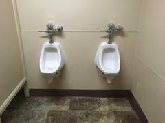 urinals (evil robot 6) Tags: urinals
