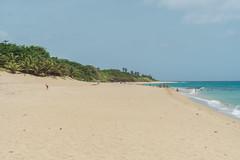 DSC01023 (someNERV) Tags: aguadilla puertorico wilderness wildo beach tropical borinquen caribbean ocean coastline hot sand water turquoise sony alpha a6300 apsc adapted minolta rokkorx 50mm f14 zhongyi lensturboii travel vacation