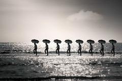 In line (Ans van de Sluis) Tags: ansvandesluis art birds fineart june landscape male man nature people portrait sea seagull sunset surreal in line inline bw blackwhite blackandwhite monochrome repetitive repetition