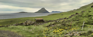 Early summer in the Faroes