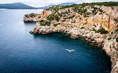 Punta del Giglio (Gijs Rijsdijk) Tags: cliff italia italiëitaly portoconte sardegna sardinia sardinië azure azuur blauw blue capocaccia highcliff marineprotectedareas nationalreserve natuurpark puntagiglio sea seascape seaside turqoise ©2017karoseiphotography