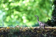 Brachiosaurus ( origami ) (Adri 79) Tags: adrianodavanzo origami paper shukikato brachiosaurus