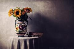 Girasoli (Davide Solurghi Photography) Tags: davidesolurghiphotography davidesolurghi stilllife indoor inside studio naturemorte naturamorta flower fleurs fiori books libri